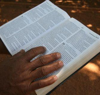 palavra predestinada de sabedoria